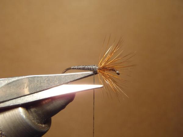 Dr. Ishigaki Fly Step 8