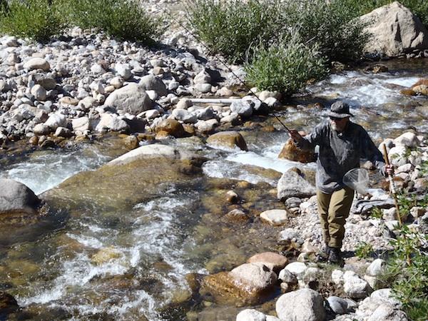 Tenkara Bum Working the Roaring River
