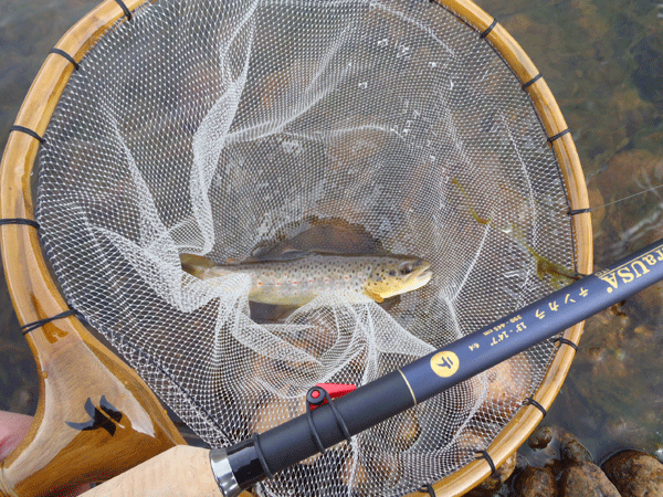 First-Fish-on-Tenkara-USA-Ito