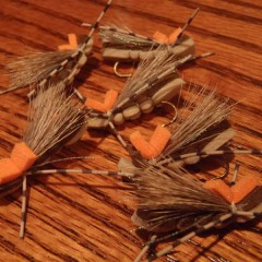 Hoppers, 5.5 X Tippet, and Random Stuff