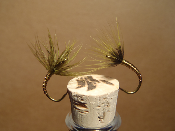 Sakasa Kebari with Brahma Hackle