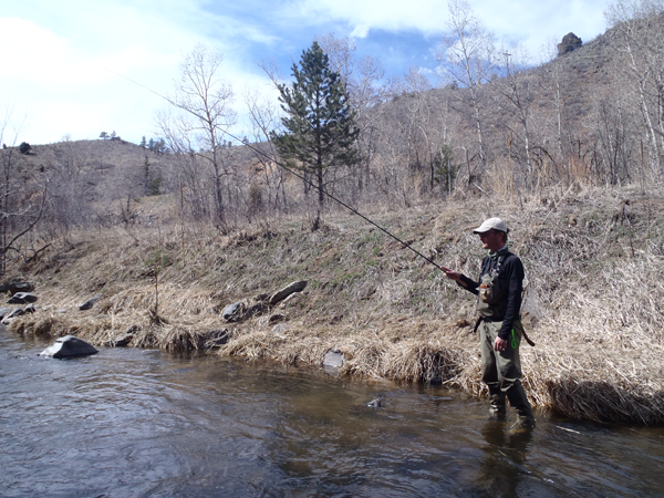 Tenkara Fishing on Bear Creek