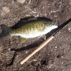 My 1st Tenkara Bass