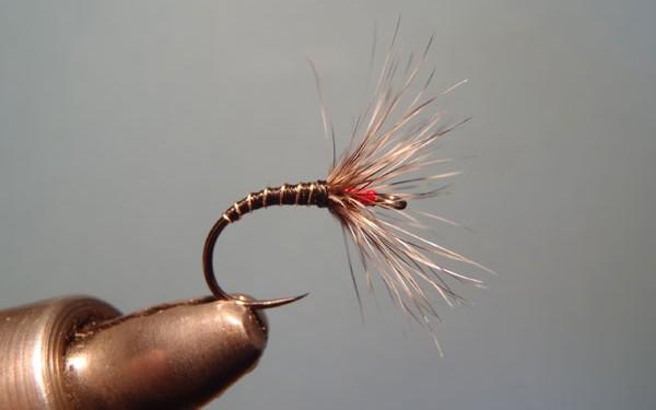 Sakasa Kebari on an Umpqua competition hook