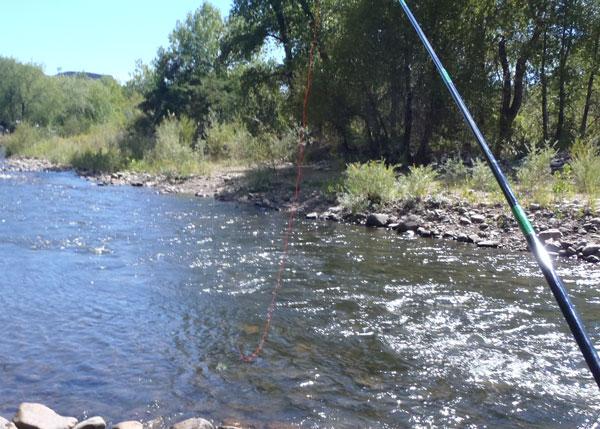 Amnesia Furled Tenkara Line on the water