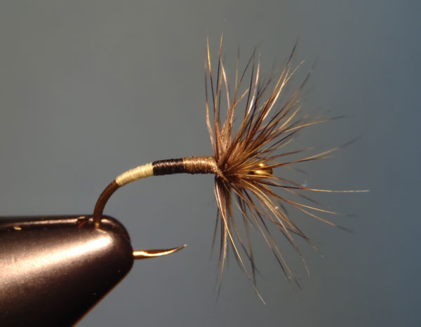 Chartreuse, Black, and Olive Dun Sakasa Kebari with Olive Grizzly Hackle