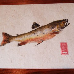 Gyotaku Brook Trout Print