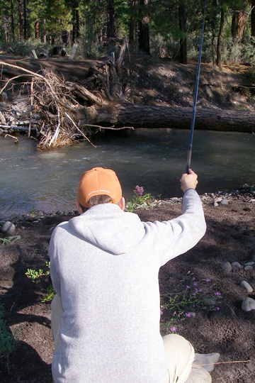 Fishing an Oregon stream with a friend's Daiwa rod. The control offered by the tenkara gear and light fly really allowed Jason to work this area effectively while staying low and less obvious (and with zero cover that was key). A real tenkara advantage here.
