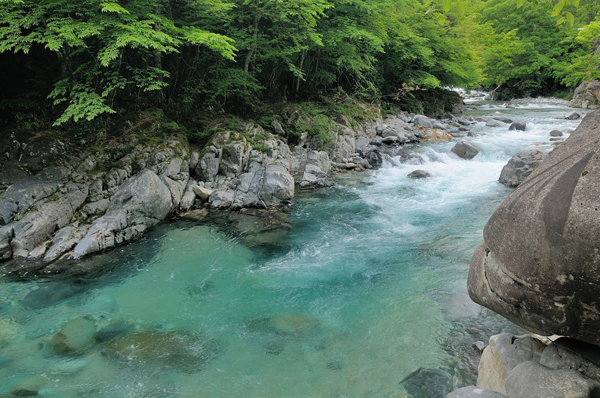 Tenkara Stream