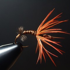 Parrot Hackle Flies