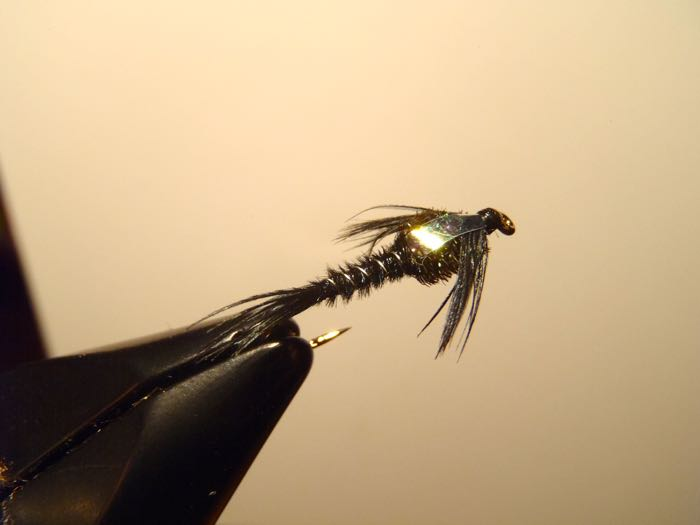Black Flashback Pheasant Tail