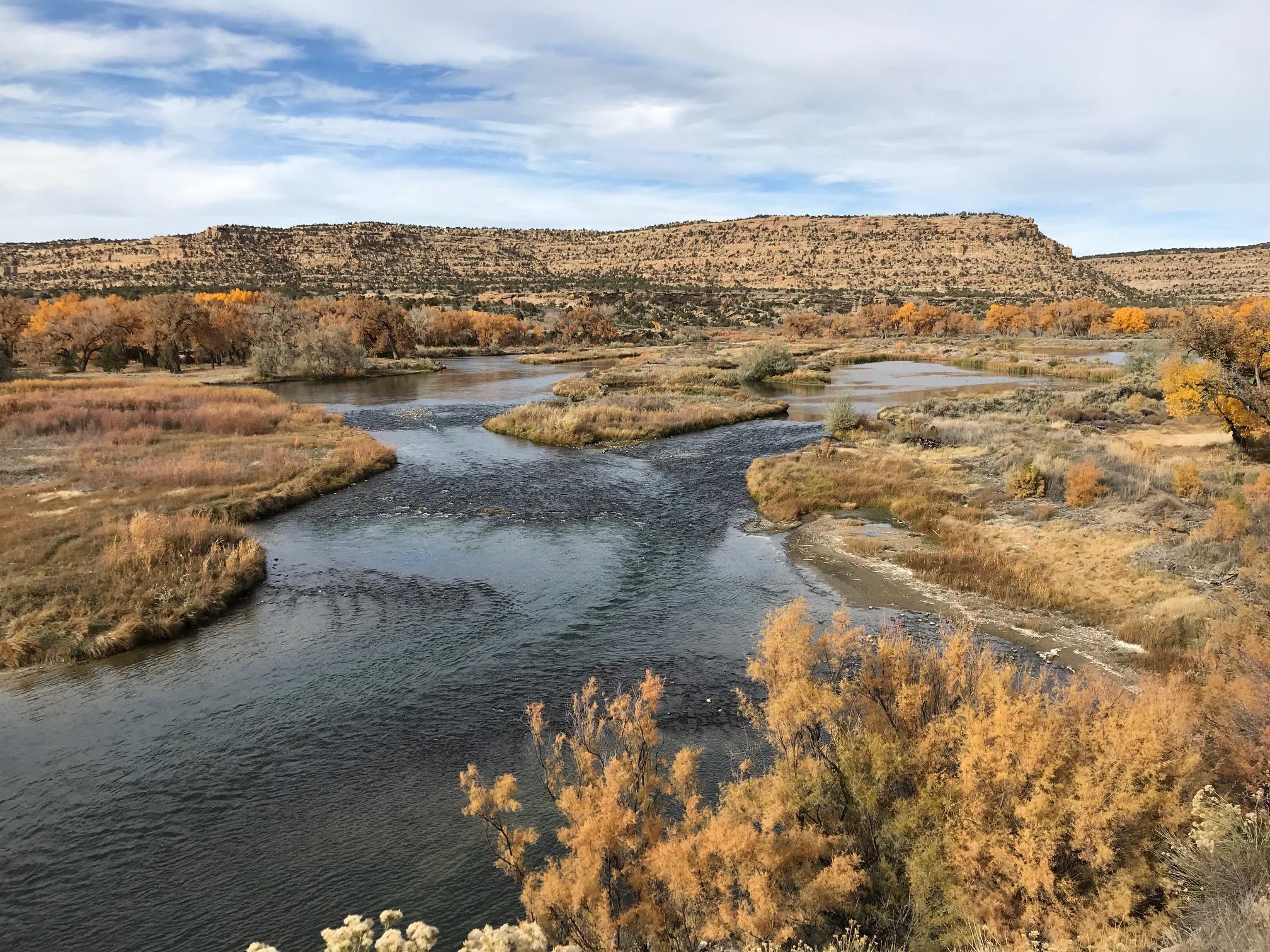 San Juan River, New Mexico