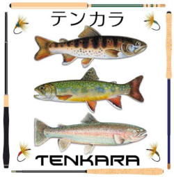 Tenkara Fisher